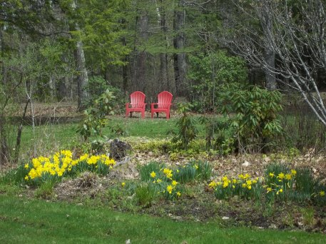Our Midcoast Maine hotel has Adirondack chairs scattered throughout our property to enjoy a sunny afternoon or our beautiful landscaping.